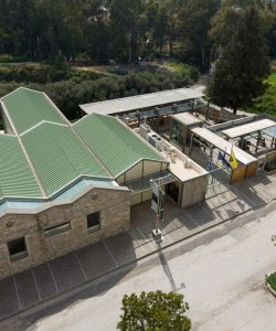 "The Museum of the Olive & Greek Olive Oil ""The Blessed Fruit of the Olive Tree"""
